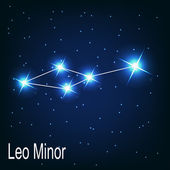"The constellation ""Leo Minor"" star — Stock Vector"