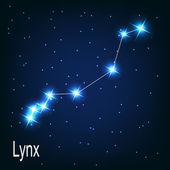 "The constellation ""Lynx"" star — Stock Vector"