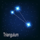 "The constellation ""Triangulum"" star — Stock Vector"