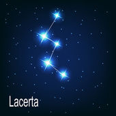 "The constellation ""Lacerta"" star — Vector de stock"