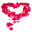 Pink rose petals forming heart — Stock Photo