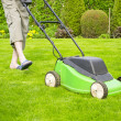 Green grass is mowed lawn mower — Stock Photo #39067335