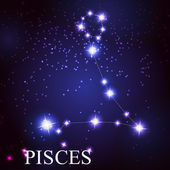 Pisces zodiac sign of the beautiful bright stars — Stock Vector