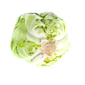 Fresh Cabbage Isolated on White Background — Stock Photo