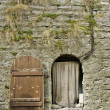 Fortress Wall And Door — Stock Photo #21576055