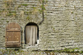 Fortress Wall And Door — Stock Photo