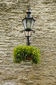 Lanterna e decoração floral na muralha medieval — Foto Stock