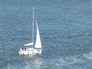 Cruising in Port Of Ijmuiden — Stock Video