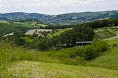 Green hills - Appennini Modenesi — Stock Photo