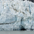 Alaska - johns glaciar hopkins — Foto de Stock   #36727851