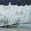 Alaska - Johns Hopkins Glacier — Stock fotografie #36727871