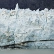 Alaska - johns glaciar hopkins — Foto de Stock   #36727871