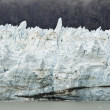 Alaska - Johns Hopkins Glacier — Stockfoto #36729111