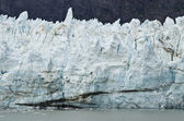 Alaska - Johns Hopkins Glacier — Foto de Stock