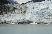 Alaska - Johns Hopkins Glacier — ストック写真