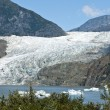 USA Alaska - Mendenhall Glacier and Lake — Stock Photo #42922865