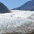 USA Alaska - Mendenhall Glacier - Texture — Stock Photo #42922895