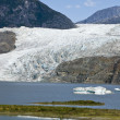 USA Alaska - Mendenhall Glacier and Lake — Stock Photo #42922997