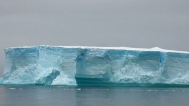 антарктида - табличных айсберг в пролив брансфилд — Стоковое видео