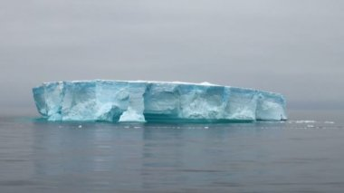 Antartica - Tabular Iceberg in Bransfield Strait — Stock Video