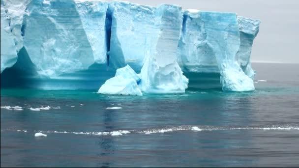 Antártida - iceberg tabular en el estrecho de bransfield — Vídeo de stock