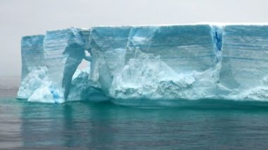 Antarctica - Antarctic Peninsula - Tabular Iceberg in Bransfield Strait — Wideo stockowe