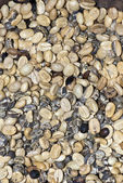 Coffee - Mixed Coffee Beans - Backgrounds And Textures — Stock Photo