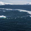 Sea Ice Off The Coast Of Antarctica — Stock Photo