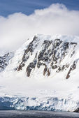 Summer In Antarctica — Stock Photo