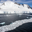 Sea Ice Off The Coast Of Antarctica — Stock Photo #46040009