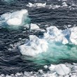 ������, ������: Antarctica Pieces Of Floating Ice Global Warming