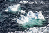 Antarctica - Pieces Of Floating Ice - Global Warming — Stock Photo