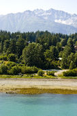 The Scenery In Haines — Stock Photo