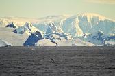 Coastline Of Antarctica With Ice Formations — ストック写真