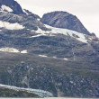 Glacier Bay National Park — Stock Photo #49096439