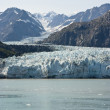 Glacier Bay National Park — Stock Photo #49096955