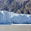 Glacier Bay National Park — Stock Photo #49097159