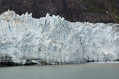 Glacier bay Nationaalpark — Stockfoto