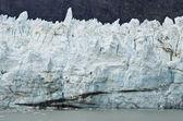 Parc national de glacier bay — Photo