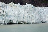 Национальный парк залива ледника — Стоковое фото