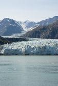 Parco nazionale di glacier bay — Foto Stock