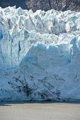 Glacier Bay National Park — Stock Photo