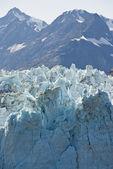 Národní park Glacier bay — Stock fotografie