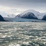 Chile - Amalia Glacier Landscape — Stock Photo #49861847