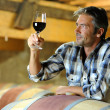 Winemaker tasting red wine in winery - Stock Photo