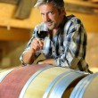 Winemaker tasting red wine in winery — Stock Photo