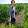 Smiling womin vineyard rows — Stock Photo #13930410
