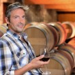 Smiling winemaker standing in wine cellar with glass — Stock Photo #13930465