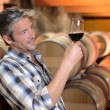 Stock Photo: Winemaker checking red wine quality in wine cellar