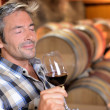 Winemaker enjoying the smell of red wine — Stock Photo